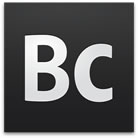 Adobe Business Catalyst